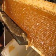 عسل شان درجه یک کردستان