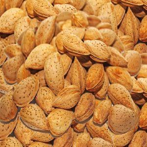 قیمت بادام سنگی به صورت عمده و خرده